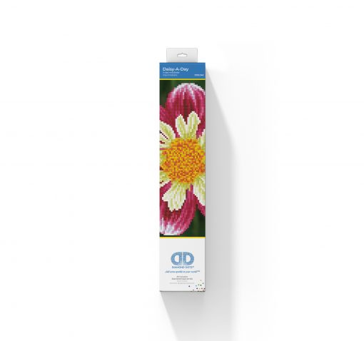 DD5.040_packaging
