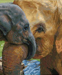 CALIN D'ELEPHANTS