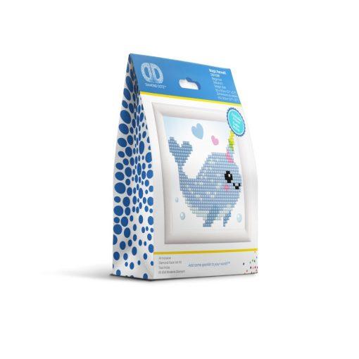 DD1.029F_packaging-2