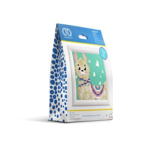 DD1.037F_packaging-2